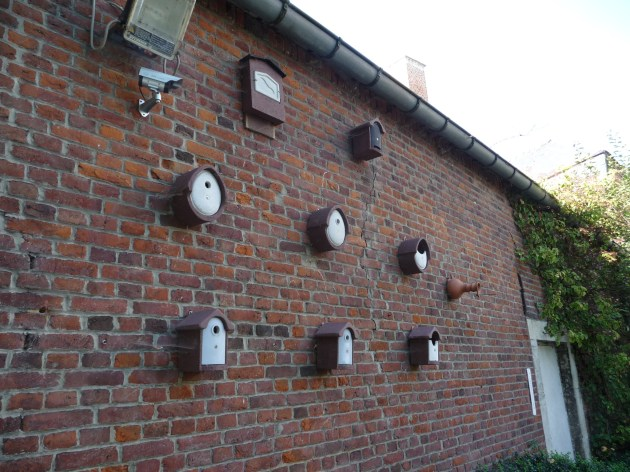 All sorts of nestbox!