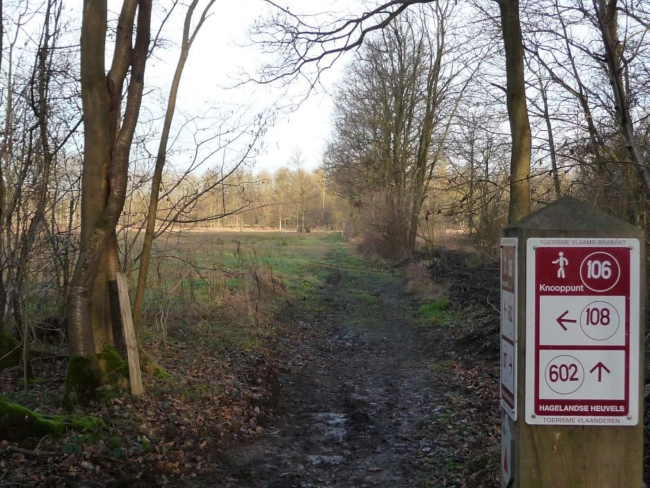 walking-network-signpost