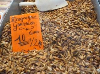 Shrimps, Oostende fish market
