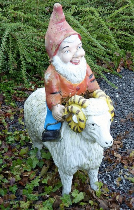 Gnome on a sheep