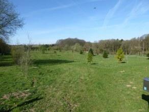 Arboretum de Lauzelle