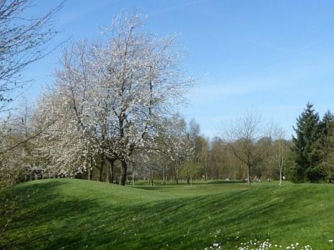 Louvain-La-Neuve golf course