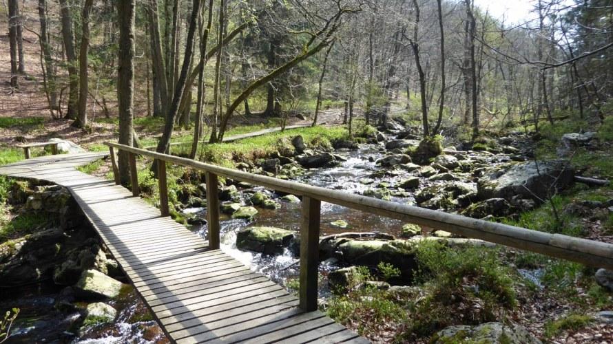 Hoegne river