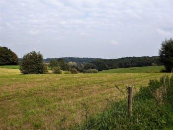 Fields near Overijse