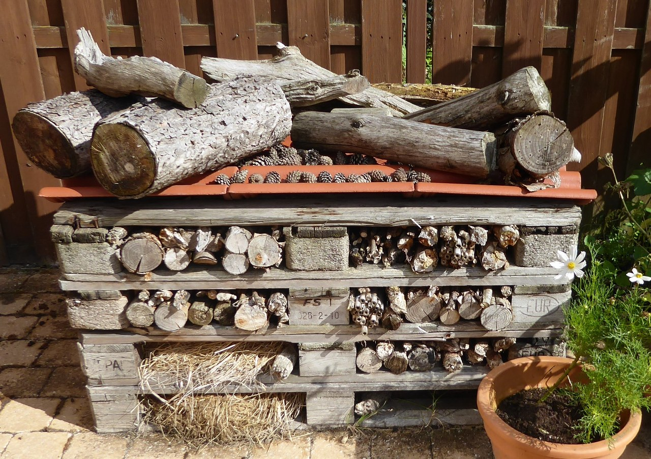 Convert wooden pallets into a luxury bee hotel!