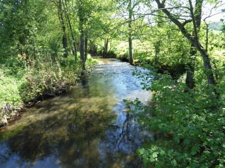 La Wimbe river