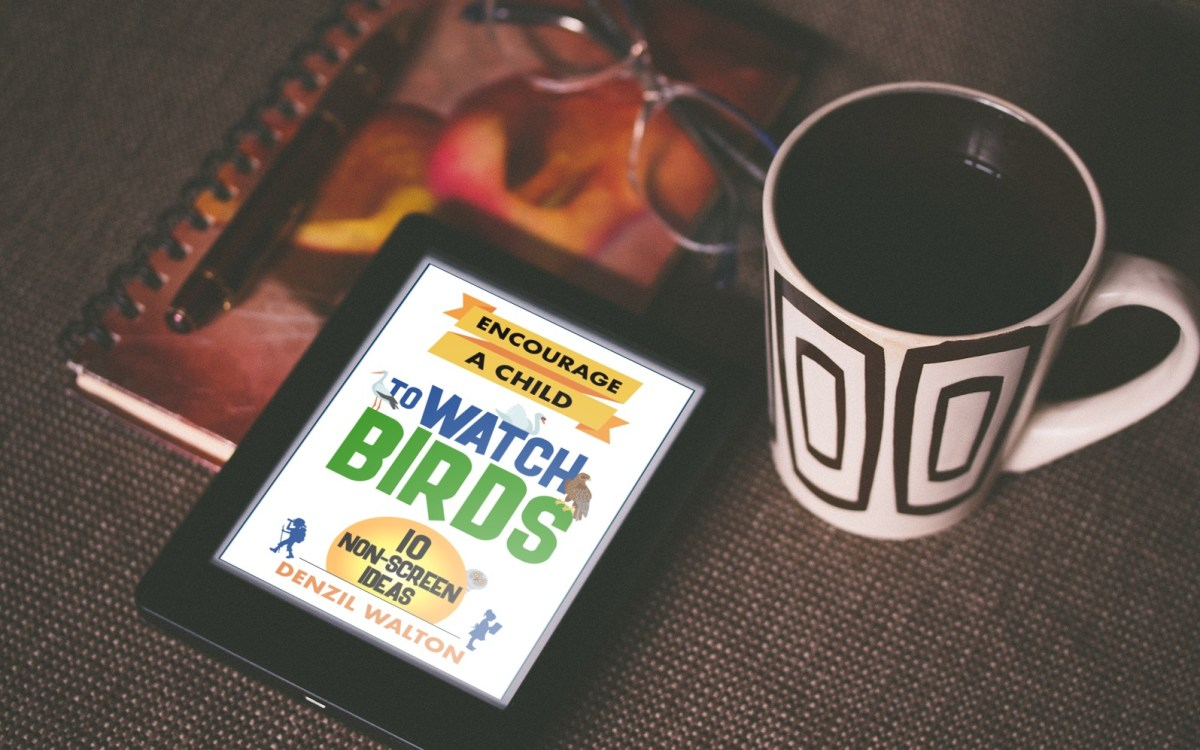 "Audrey Driscoll reviews ""Encourage A Child To Watch Birds"""