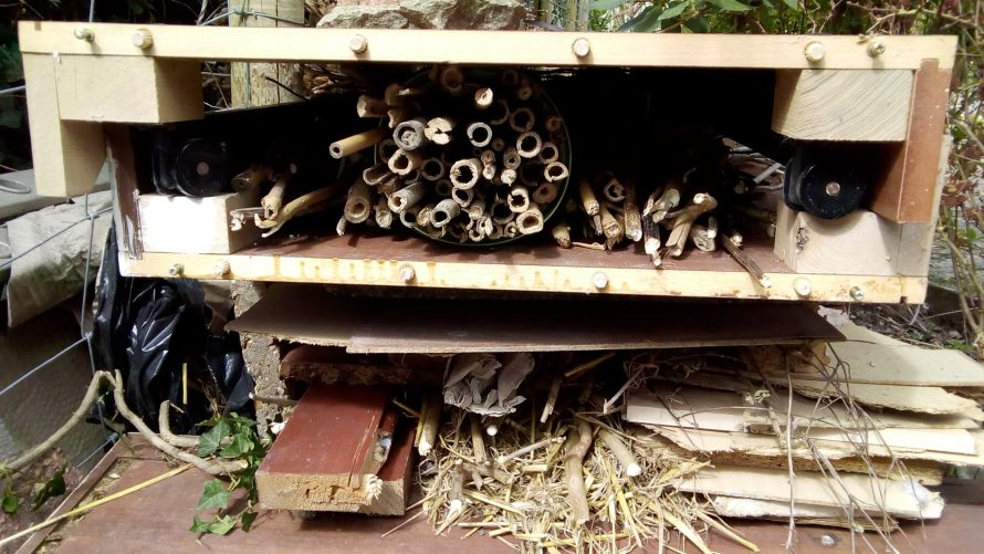 Bee hotel by Elaine, Isle of Wight
