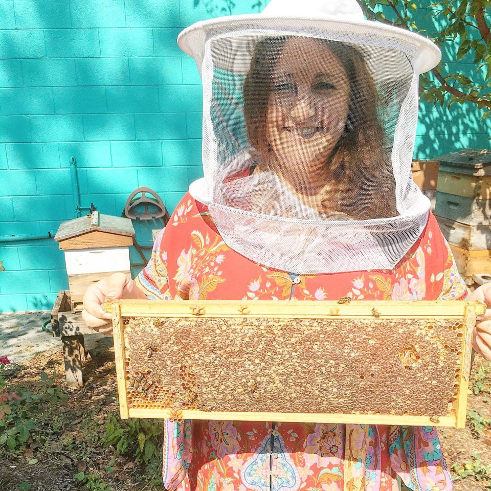 Holding frame of bee hive