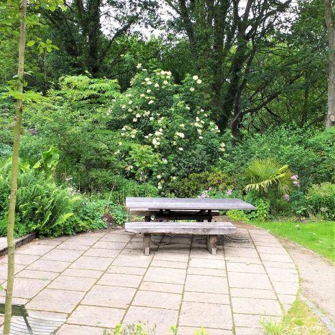 The garden at Jesmond Dene House