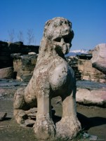 Lion sculpture at Butkara Stupa, Swat. Butkara is among the earliest Gandhara stupas (3rd century BCE), believed to have been erected on the orders of Mauryan Emperor Ashoka and containing genuine relics of the Buddha.