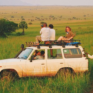 Safari Travels