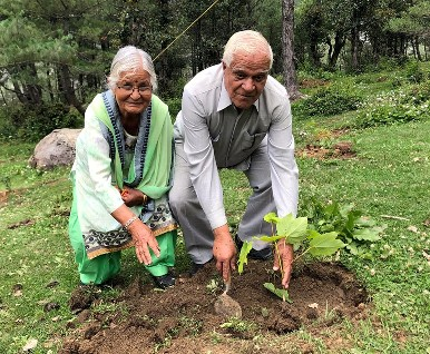 Plantation in Manali