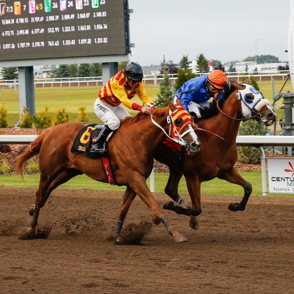 Live Horse Racing at Century Mile Racetrack & Casino