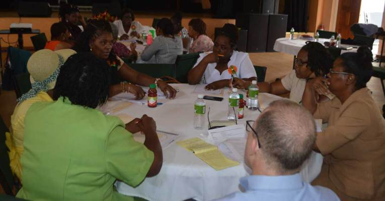 Each group worked on a different programme element for the new elderly care policy.