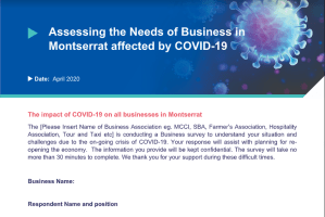 Screenshot of COVID-19 Business Survey