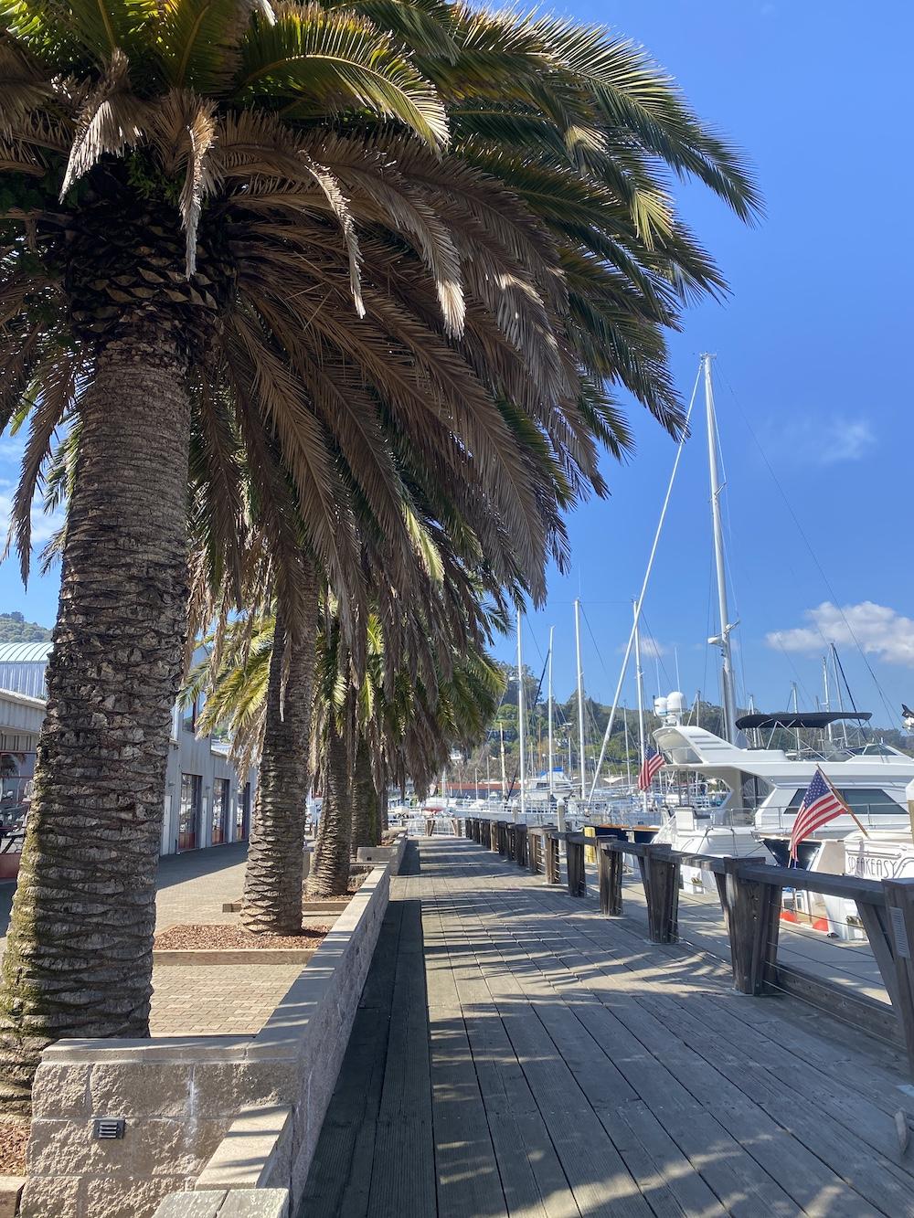 Sausalito Marinas - Schoonmaker Point Harbor