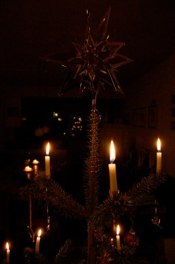 xmas tree, candles, julie rouse