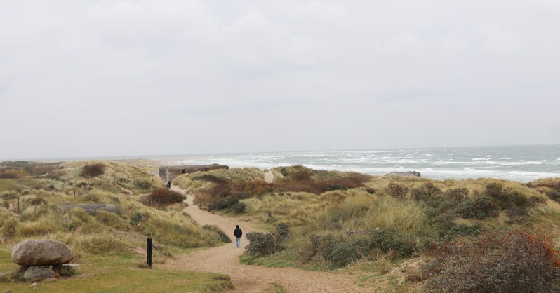 Live Local, Think Global: Highlights from This Fall's Study Tours Skagen