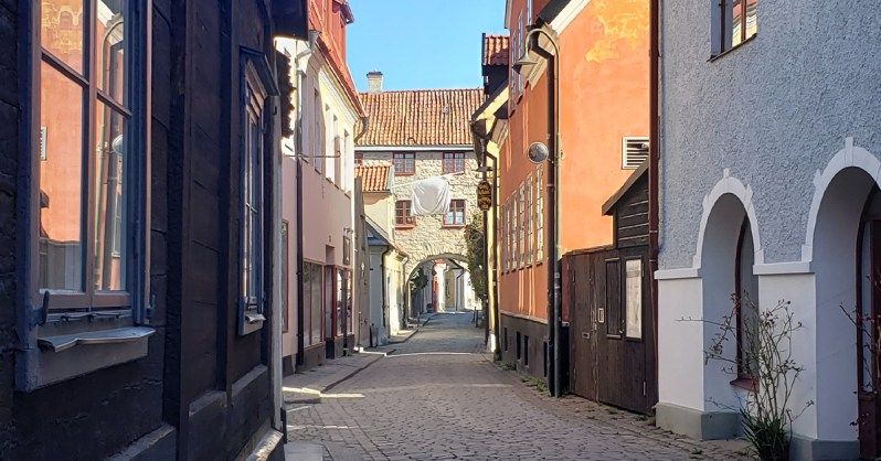 Affective-Neuroscience-Lab-Exploring-New-Academic-Opportunities-with-Nhi-and-Jessica-Spring-2021-Gotland_Visby