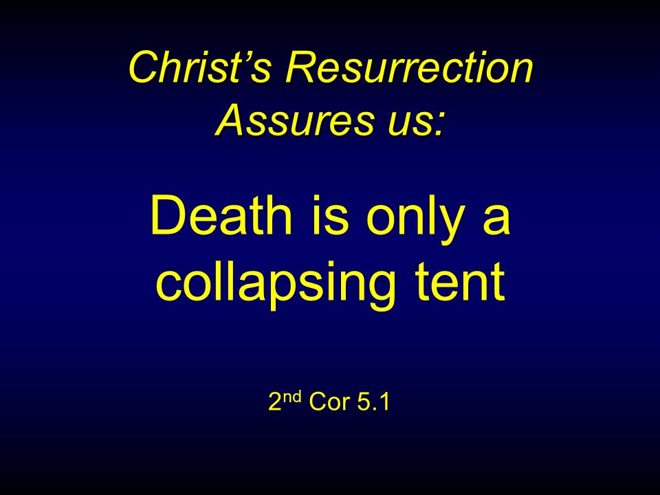 WTB-32 - Resurrection Priorities-2 (15)