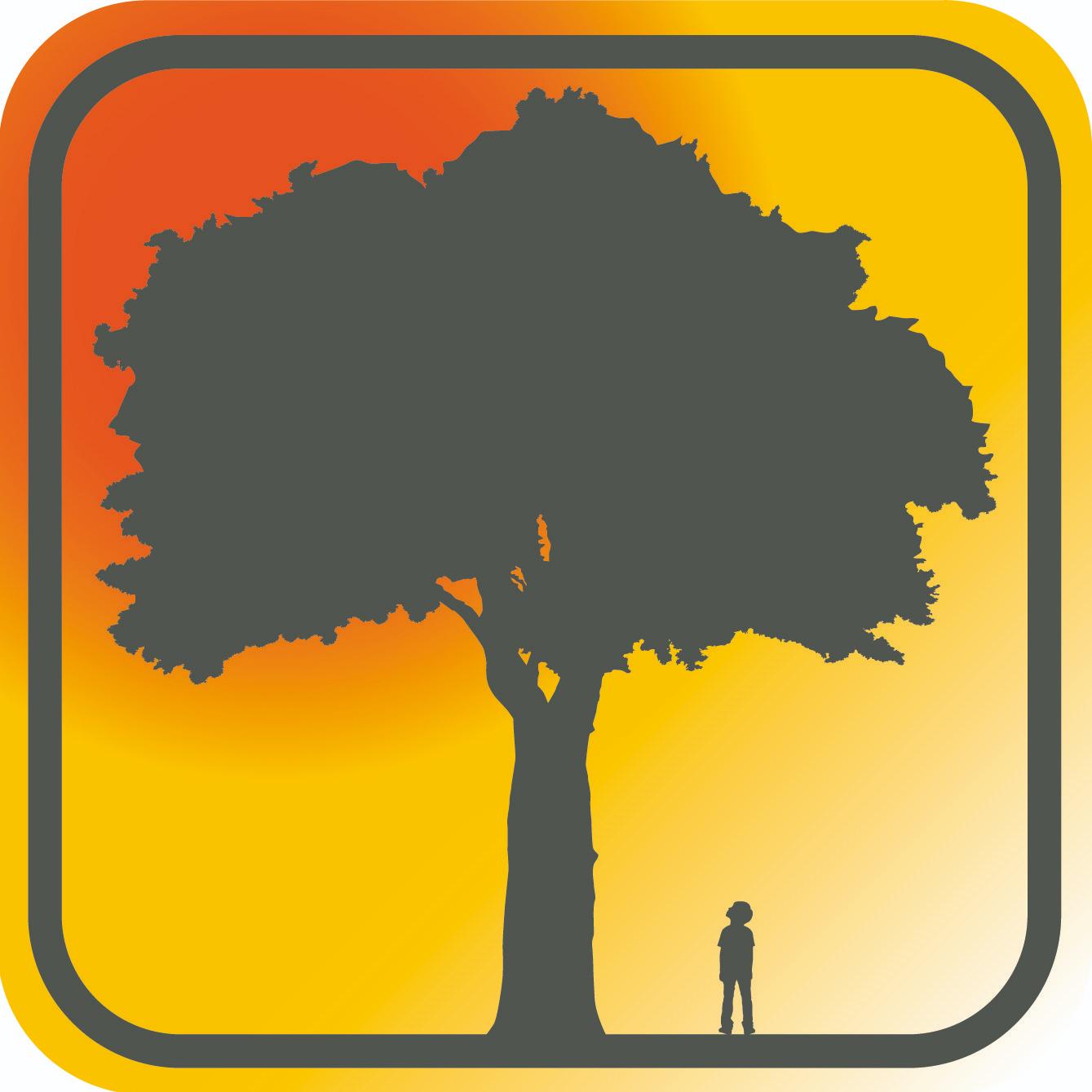 Discover Tree Climbing