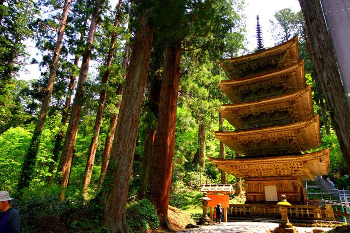 A five-storied pagoda of national treasures and a row of cedar trees that have been certified as three stars by the Michelin Green Guide Japon