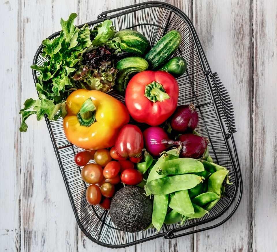Tips to Explaining Your Vegetarian/Vegan Beliefs
