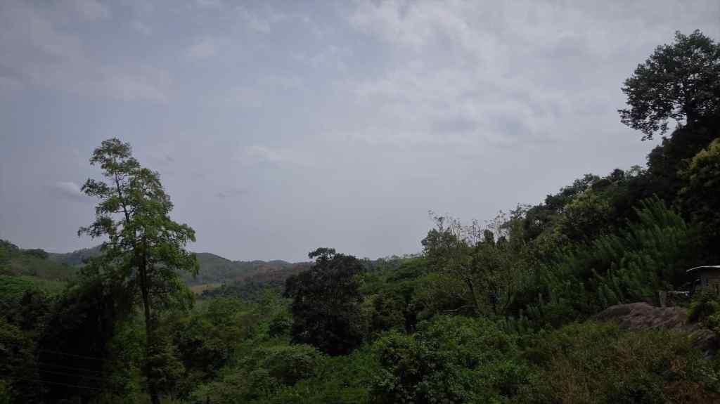 Diyaluma waterfall; views from the bus