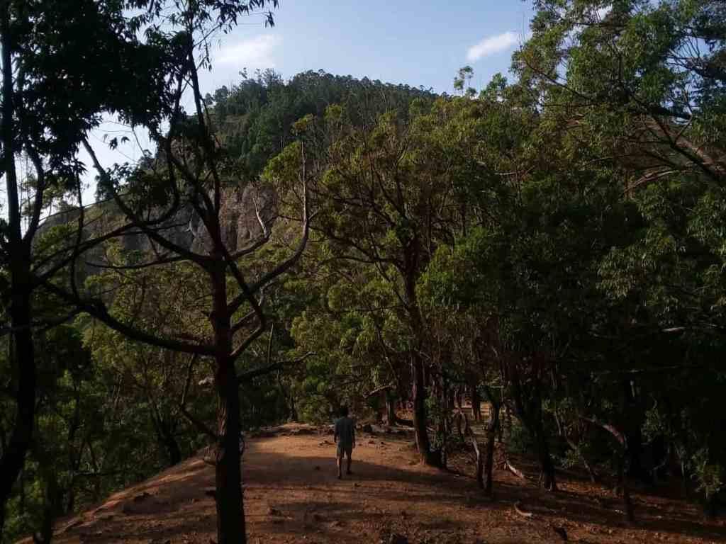 Top Experiences in Ella; hike Ella Rock