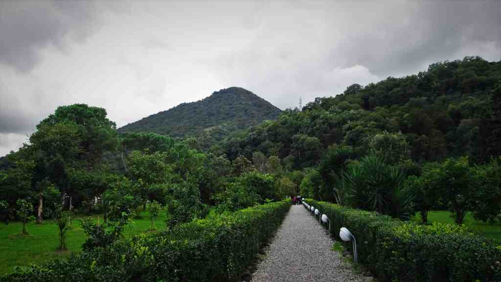 Reasons to visit Ramsar; wander in the Palace Museum Gardens