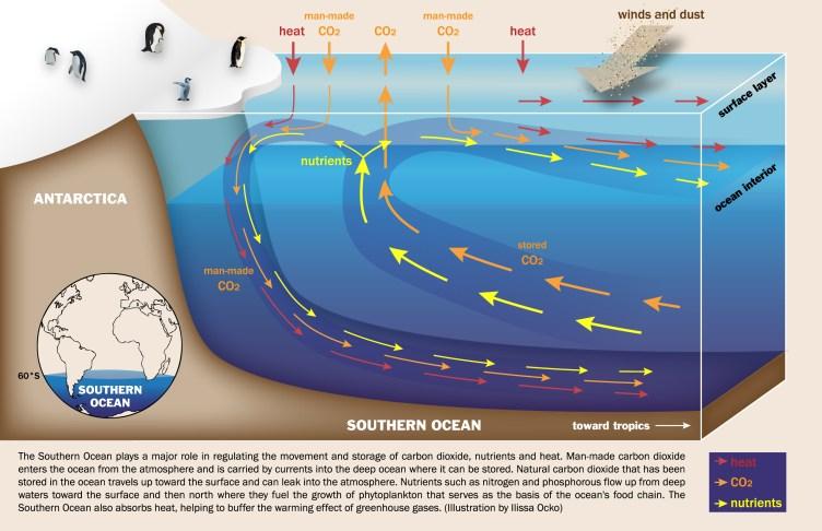 Southern Ocean diagram