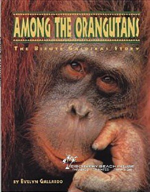 Among the Orangutans: Publishers Weekly Review