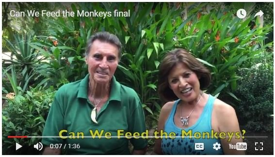 Can We Feed the Monkeys?