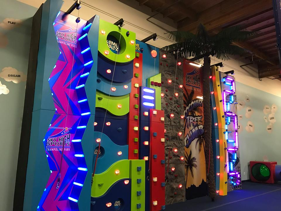 Indoor Climbing Range of products