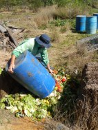 LC swales soil creation project - green waste donation