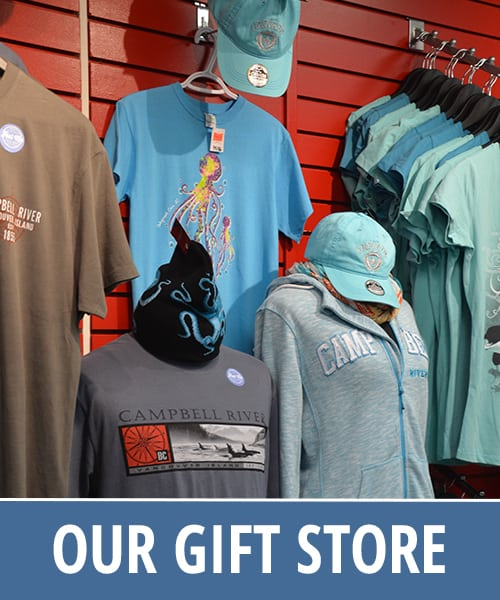 Discovery Marine Safaris Gift Store in Campbell River