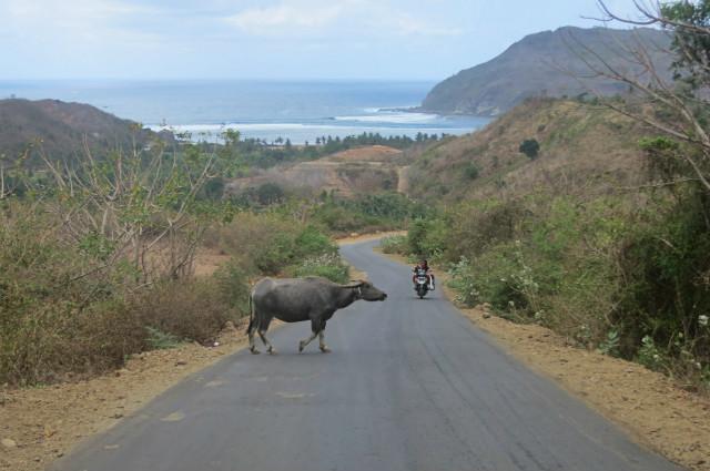 kuta lombok view