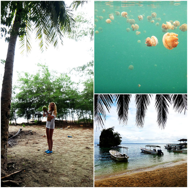 things to do in Togean islands