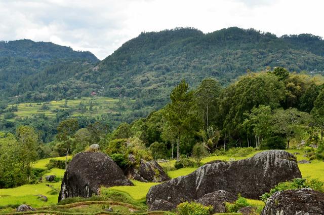 Batutumonga toraja sulawesi