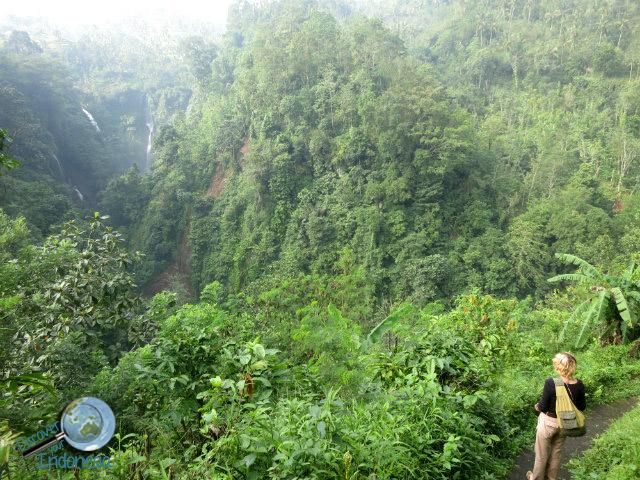 trekking to sekumpul waterfall bali
