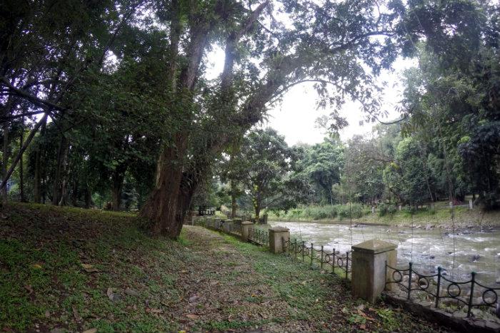 Kebun Raya Bogor river area