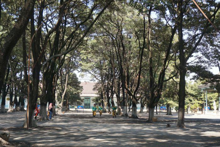 Royal palace surakarta