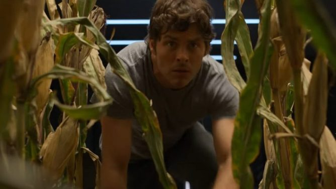 James Marsden peeks through some large stalks of corn as seen in The Stand on CBS All Access.