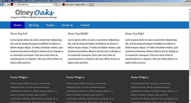 Website with a Genesis framework static homepage