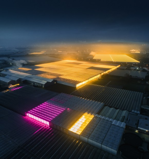"""How the Netherlands use agricultural density through """"architecture"""" to feed the world"""