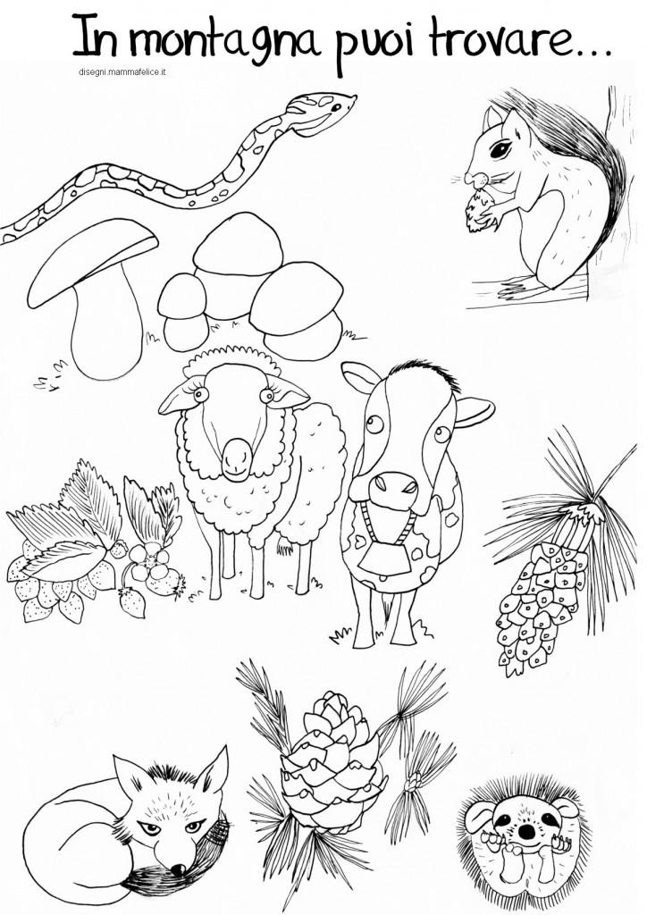 Disegno da colorare animali della montagna  Disegni