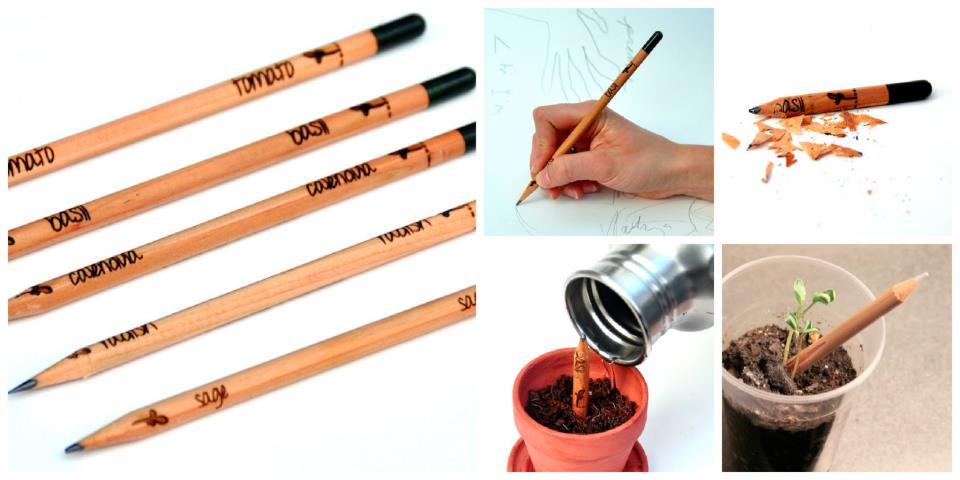 1x1.trans Sprout: el lápiz planta que nos recuerda que todo puede tener una segunda vida.%disenosocial