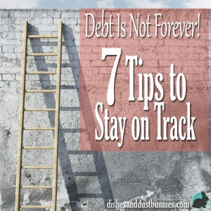 Debt Is Not Forever – 7 Tips to Stay on Track