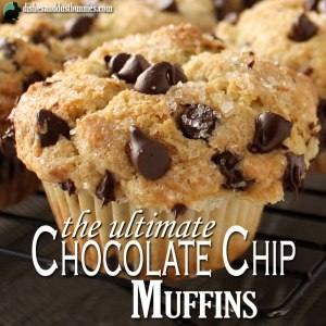 The Ultimate Chocolate Chip Muffins